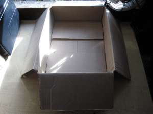 Empty organic feeding box