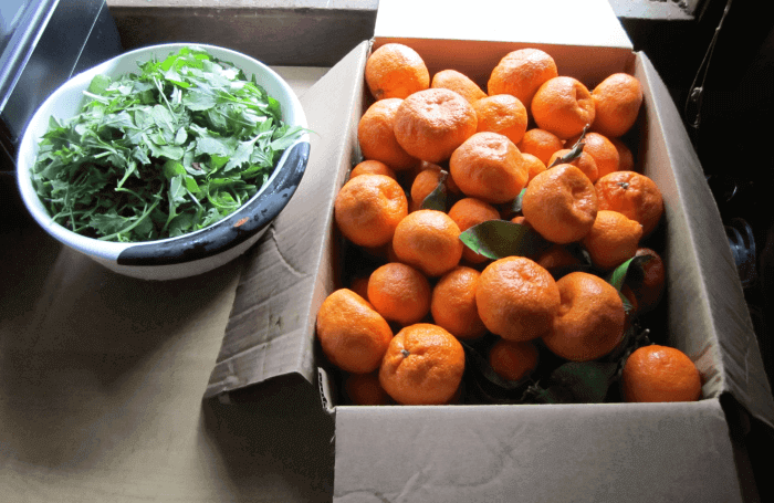 Tangerines and Greens