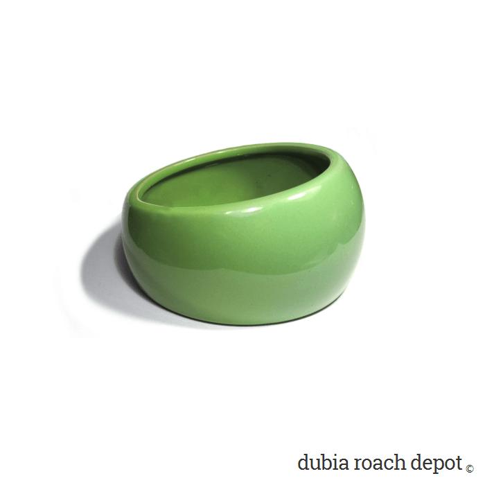 Ergonomic Dubia Roach Feeding Dish product image