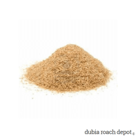 Mega Roach Gutload